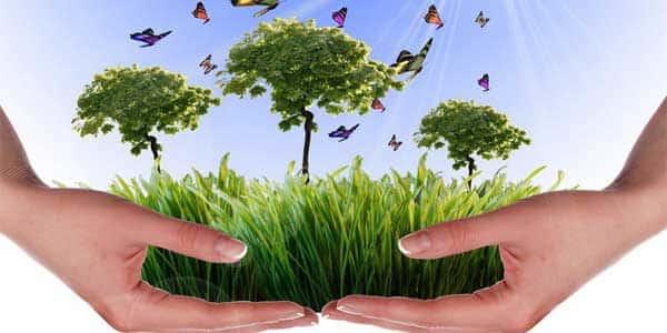 Conoce la normativa aplicable, régimen administrativo y documentos técnicos necesarios en materia de ambiente con los cursos en Medio Ambiente.
