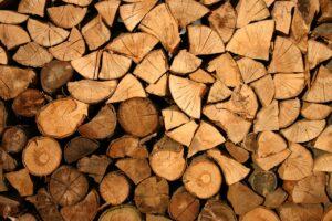 Nuevo título de FP: técnico en procesado y transformación de la madera